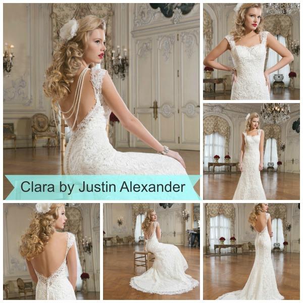 Clara 8761 collage
